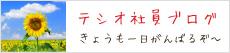 テシオ社員のブログ